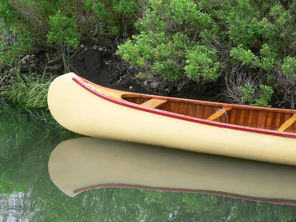 Kodachrome Canoe by andytechie