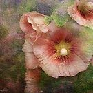 Hollyhock a la Monet by © Kira Bodensted