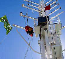 Esperanza Greenpeace Two by ArtFotos