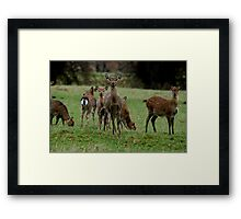 Here Come The Girls! Framed Print