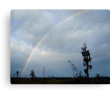 Rainbow over Econfina Creek 12/09 Canvas Print