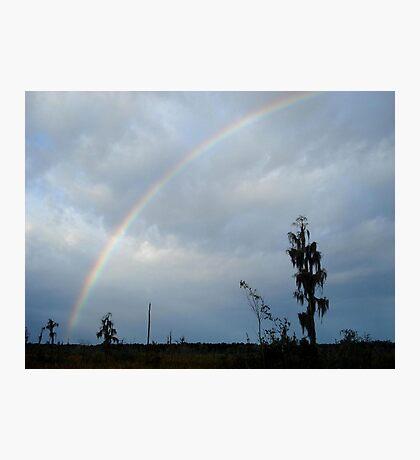 Rainbow over Econfina Creek 12/09 Photographic Print