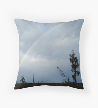 Rainbow over Econfina Creek 12/09 Throw Pillow