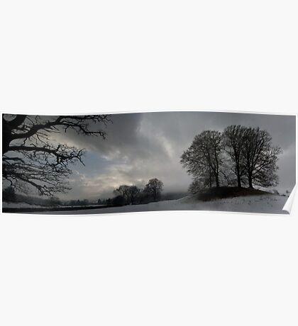 Esthwaite Trees Poster