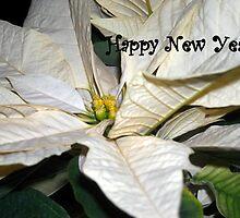 Happy New Year! by debbiedoda