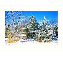 Idaho Winter Scene 1, USA Art Print