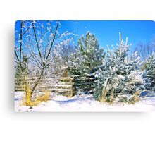 Idaho Winter Scene 1, USA Metal Print