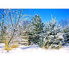 Idaho Winter Scene 1, USA Photographic Print