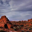 In the Valley of Fire by Tom Fant