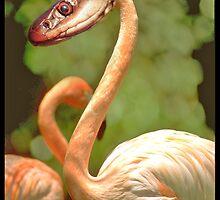 Snakemingo by AlexCintron