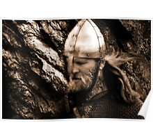 The Viking Warrior Poster