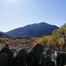 Quartz Mountain by NancyC
