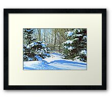 Idaho Winter Scene 2, USA Framed Print