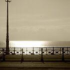 Sepia Sea Front by Ben Porter