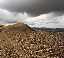 Mt. Lee, Kosciusko National Park by kristinagav