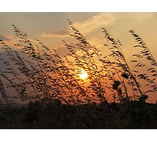 A sunset in Sarkoy Photographic Print