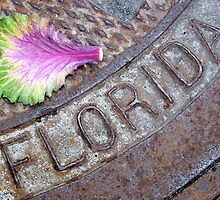 I Love Florida by Caren