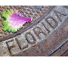 I Love Florida Photographic Print