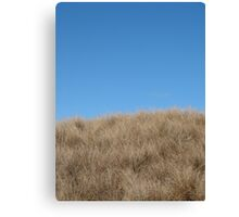 wither hills Canvas Print