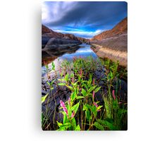 Bloom in the Rock Canal Canvas Print