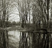 In the Sticks by Ron Neiger