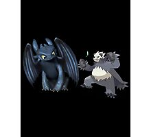 Toothless and Pokemon Photographic Print