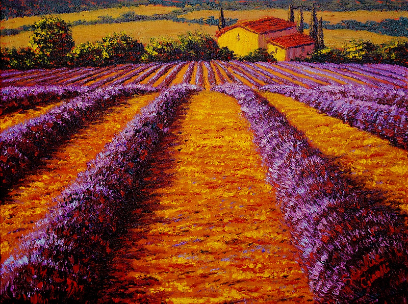 Provence Rolling Hills of Lavender by sesillie
