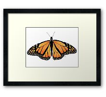 The Monarch Butterfly Framed Print