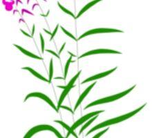 Willow-herb Sticker