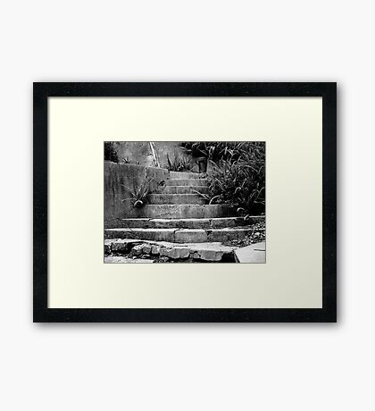 Little Path To Nowhere Framed Print