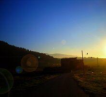 Cold sun by salwaosman