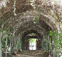 Tunnel Arch by ScenerybyDesign
