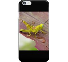 HDR Grasshopper iPhone Case/Skin
