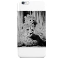 Cheetah cubs resting iPhone Case/Skin