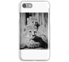 Cheetah cubs resting iPhone Case/Skin