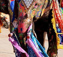 Elephant Ho... Ho... Ho... by Indrani Ghose