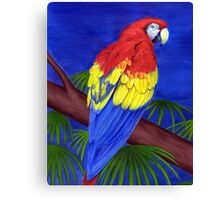 Scarlet Red Macaw (Ara macao) Canvas Print