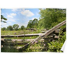Fenced Meadow Poster