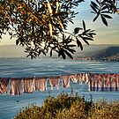 clothes in the sun by oreundici