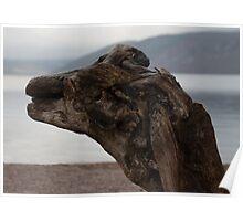 Loch Ness - Is it Nessie...?? Poster