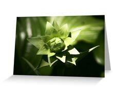 Layered Green Buds Greeting Card