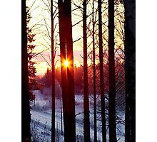Cold Sun Photographic Print