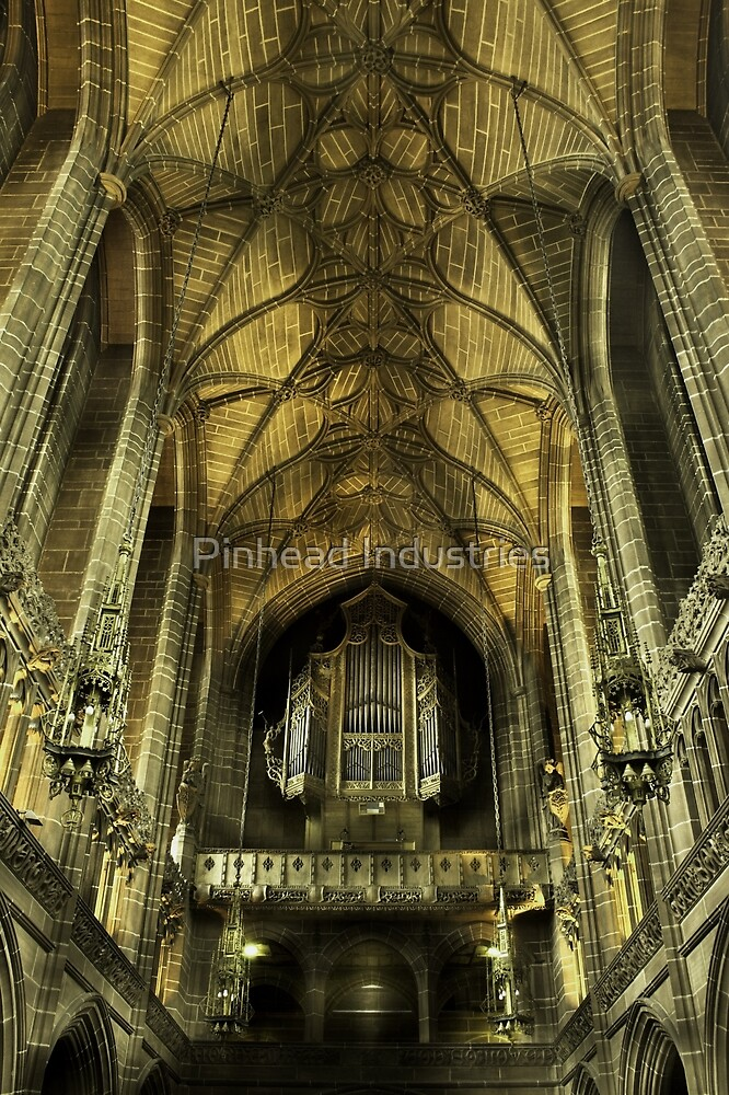 The Organ by Pinhead Industries