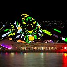 Tiger Tiger Burning Bright - Sydney Vivid Festival - Australia by Bryan Freeman