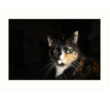 Kiss my What? Disdainful Tortie Calico Cat Art Print