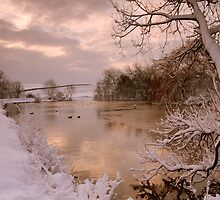 Winter scene at Falmer Pond by mikebov