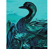 The Lonely Duck Photographic Print