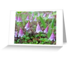 Twin Flowers Greeting Card