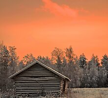 Sunset Barn by ilpo laurila