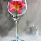 Wine Glass Vase by Melody Ricketts